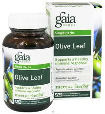 OLIVE LEAF  - Product Image