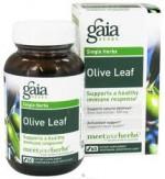 OLIVE LEAF - Product Image