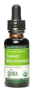 WORMWOOD Extract - Product Image